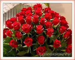 Imagini Pentru Felicitari Cu Flori De Ziua De Nastere Flori