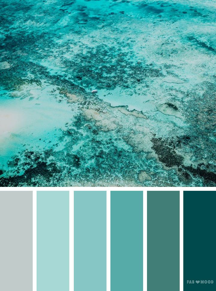 Shades Of Green Ocean Inspired Color Palette Wedding Inspiration Colorpalette Colorscheme Pantone