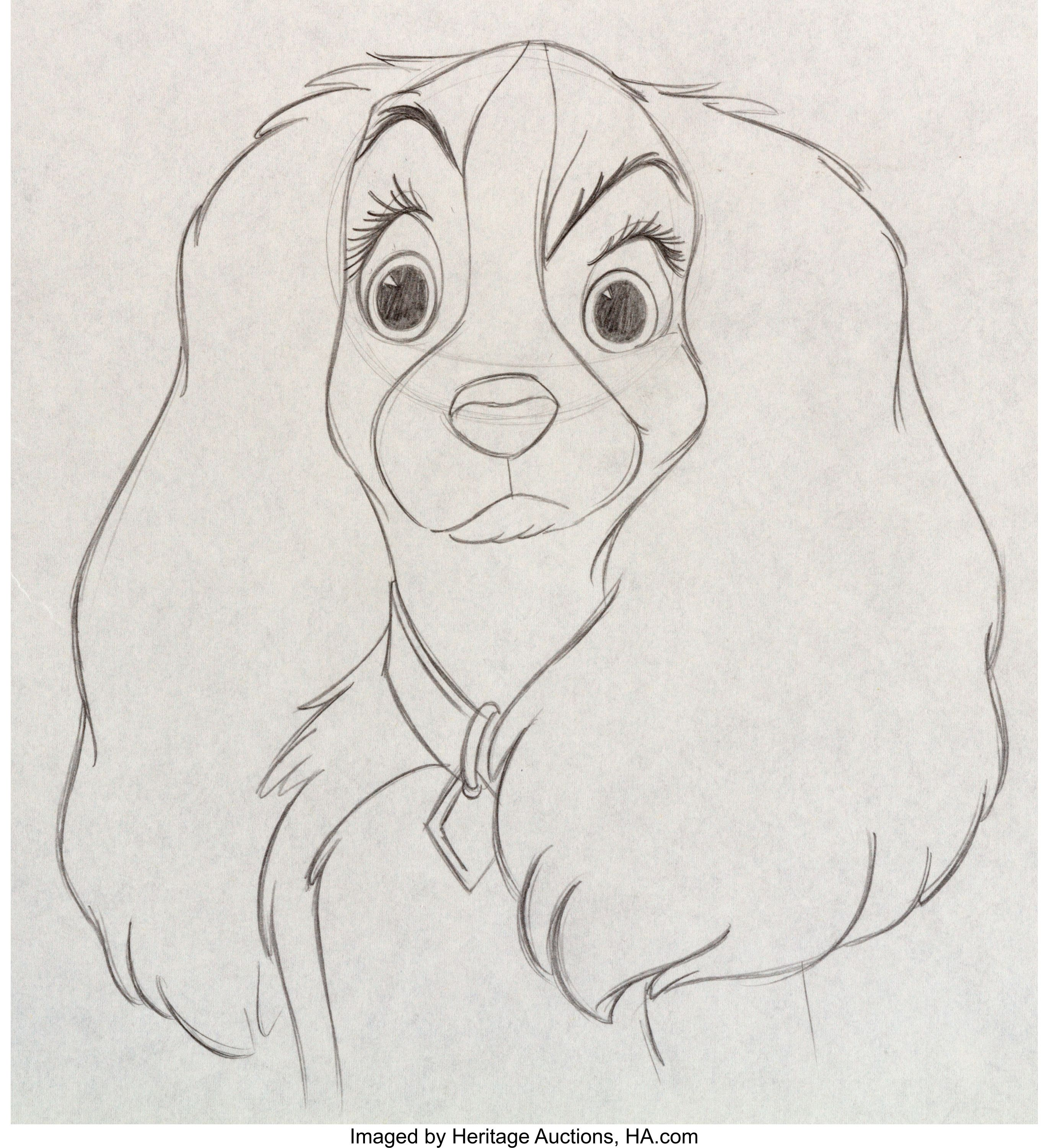 Lady And The Tramp Lady Animation Drawing Walt Disney 1955 Disney Character Drawings Disney Art Drawings Disney Canvas Art