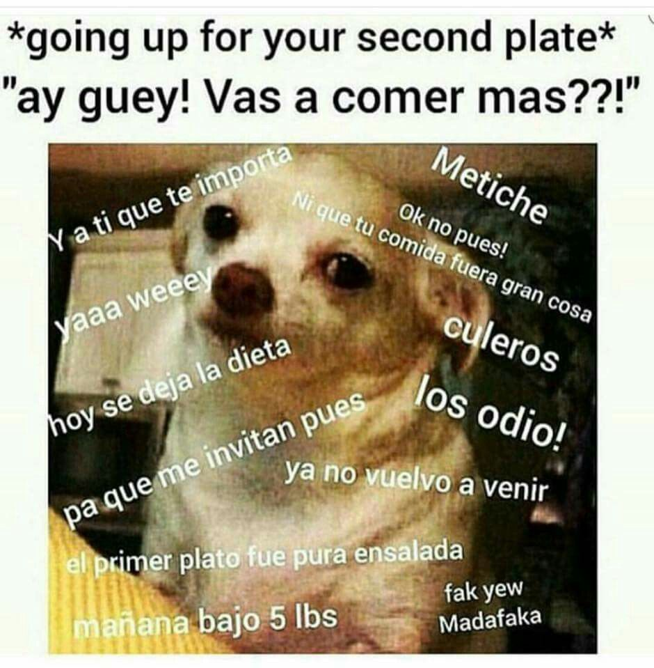 Pin on funny en ESPAÑOL
