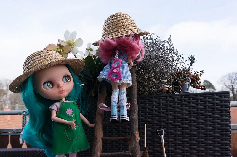 Blythe A Day 17 January 2015 - Show your hat