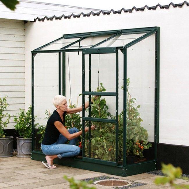 Seinaäärne kasvuhoone