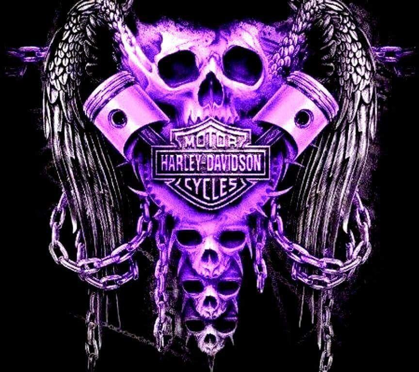 floozy-how-skulls-harley-davidson-ass-sex-amateur-pics