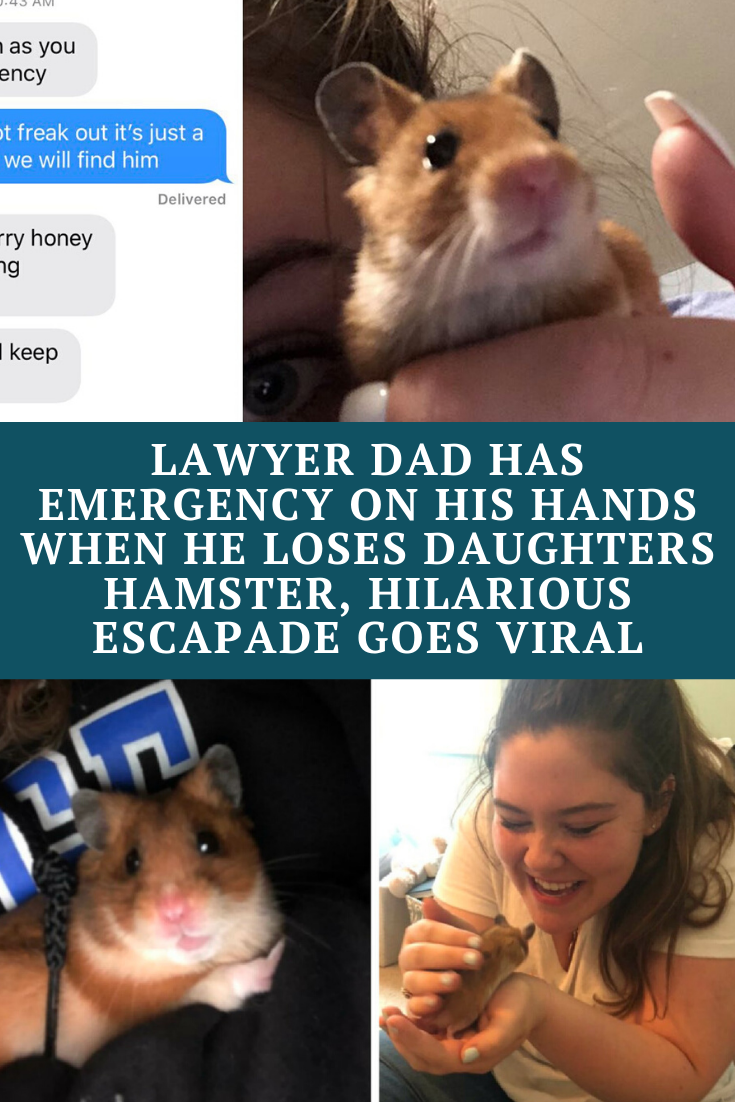 Lawyer Dad Has Emergency On His Hands When He Loses Daughters