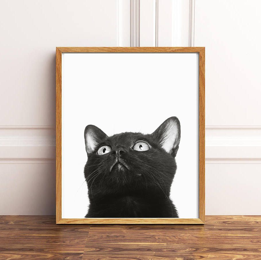 Black cat print cat printable art black and white cat wall art