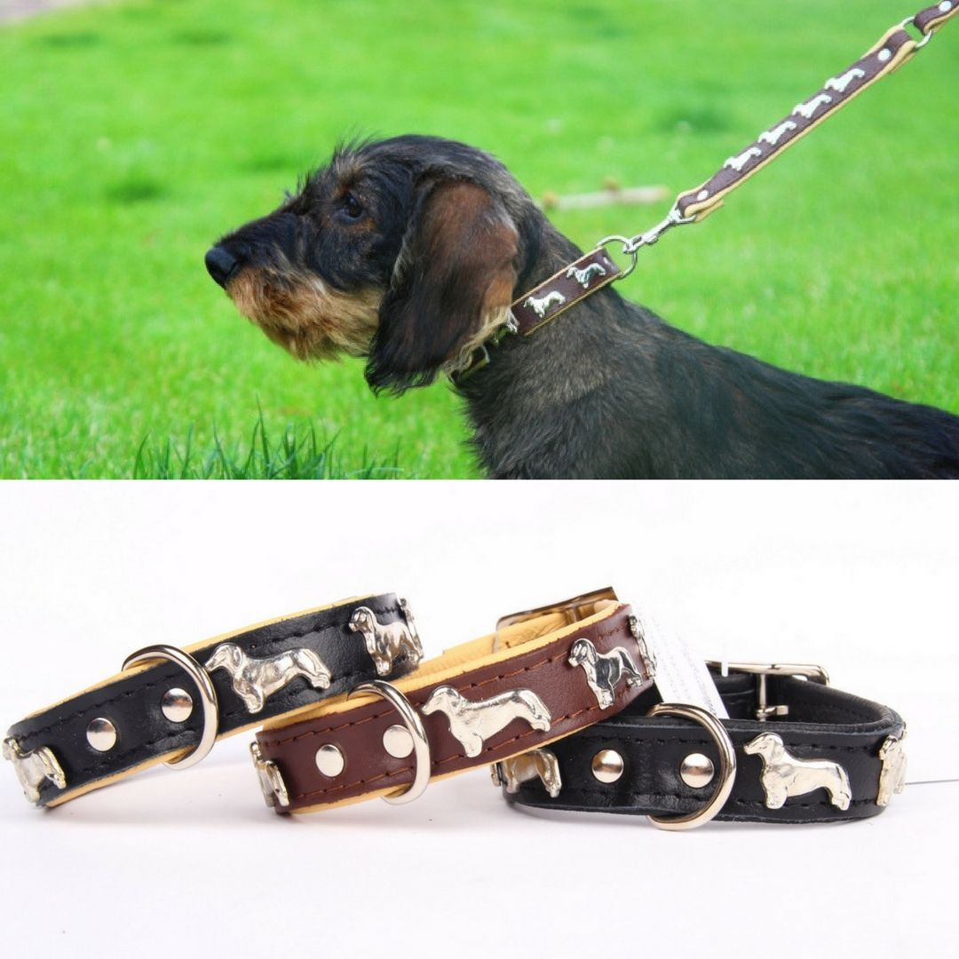 Leather Dog Leash For A Dachshund With A Matching Dog Collar Available In 3 Colors Leren Hondenriem Voor Een Leather Dog Leash Dogs Dog Leash