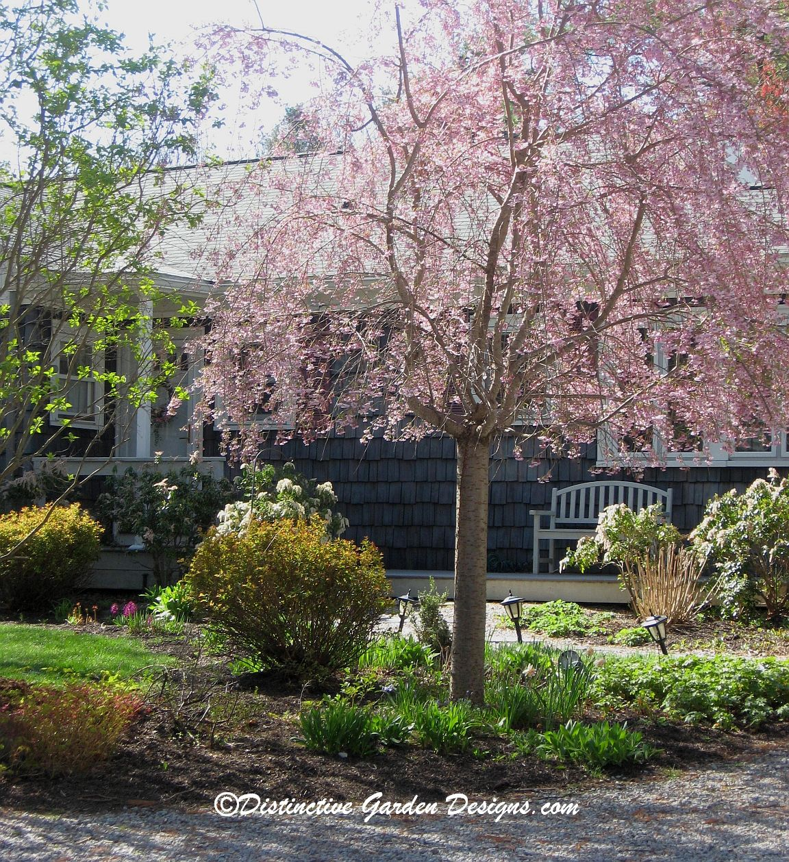 Garden Ideas Designs And Inspiration: Weeping Cherry Via Distinctive Garden Designs . Com