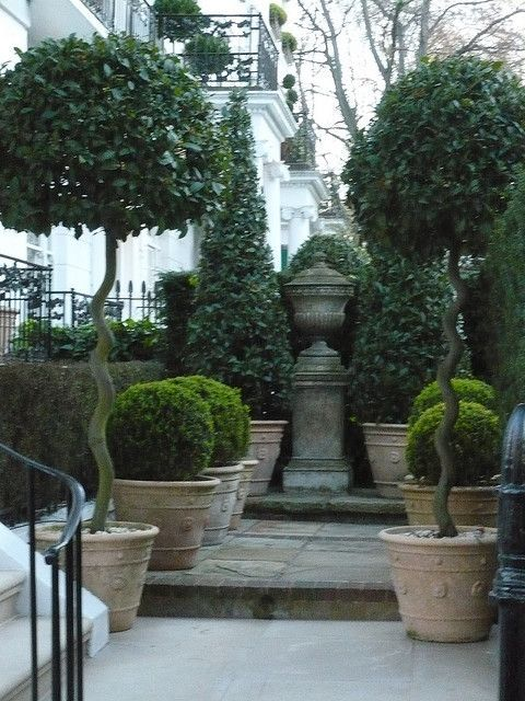Beautiful Topiary Collection Cone Shaped In Back Shorter Rounded Boxwoods Most Likely And Tall Topiaries In Fron Beautiful Gardens Garden Urns Garden Design