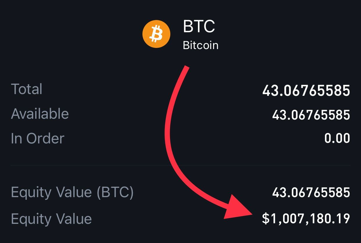 10 millió dollárért vett bitcoint a szoftvercég - diosgazda.hu