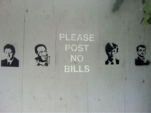 no bills please   crazy cats more cute & funny...