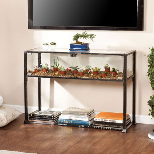 Fabulous Terrarium Display Console Products Shadow Box Table Dailytribune Chair Design For Home Dailytribuneorg