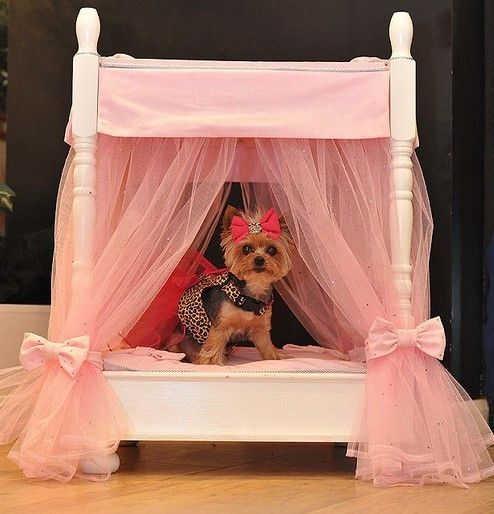 For when my princess gets her puppy! : princess dog bed with canopy - afamca.org