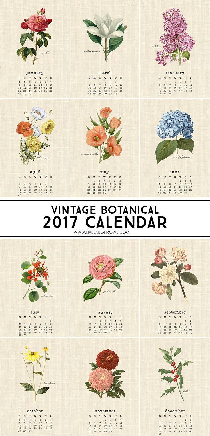 Vintage botanical 2017 calendar bulletin board desks for Calendar bulletin board printables