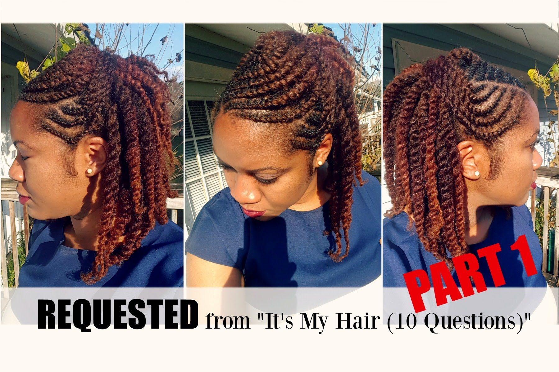 Flat Twist Hairstyle On Natural Hair