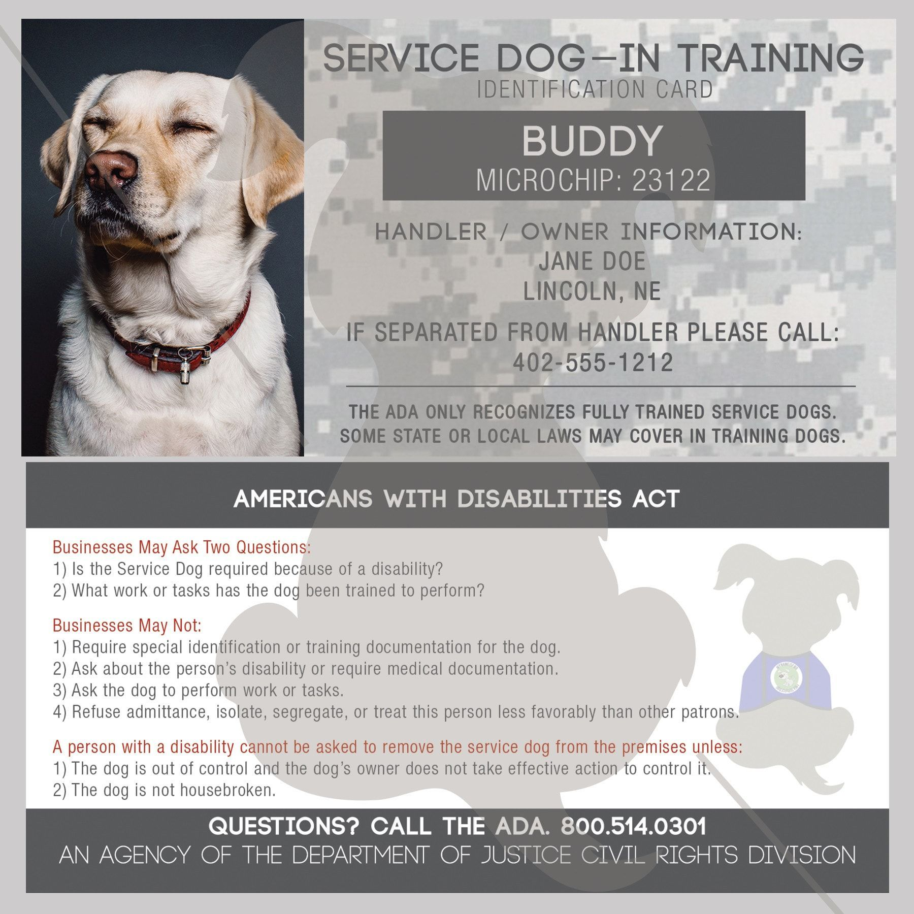 Our Identification Cards Are Customizable To Your Information Enter In Your Dog S Name Your Name City S Service Dogs Medication For Dogs Dog Identification