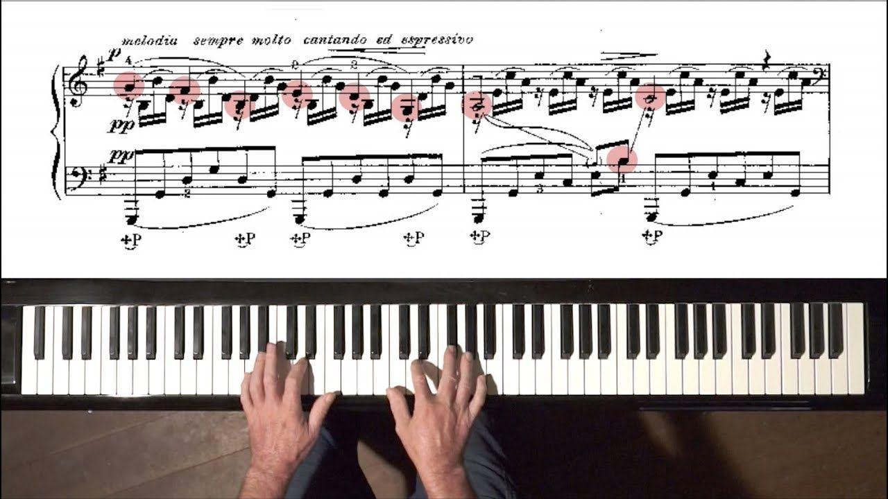 "SaintSaëns ""The Swan"" PIANO (A. Siloti) + Free Practice"