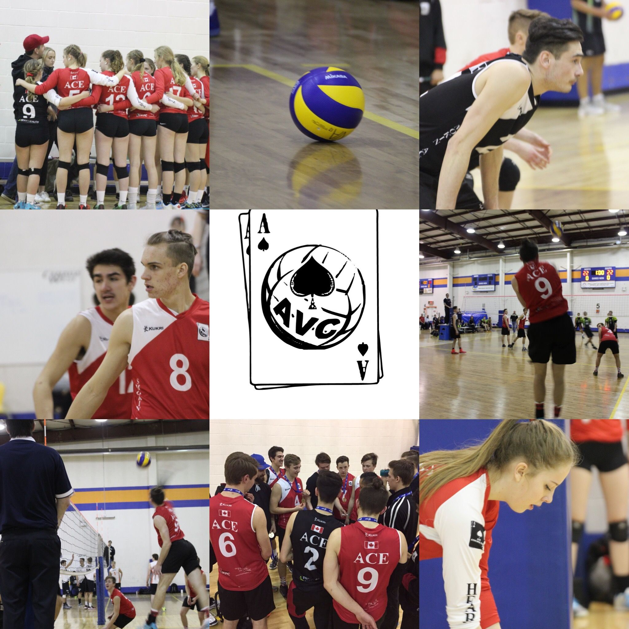 Pin By Coach Wildman On Ace Volleyball Club Volleyball Clubs Baseball Cards Baseball