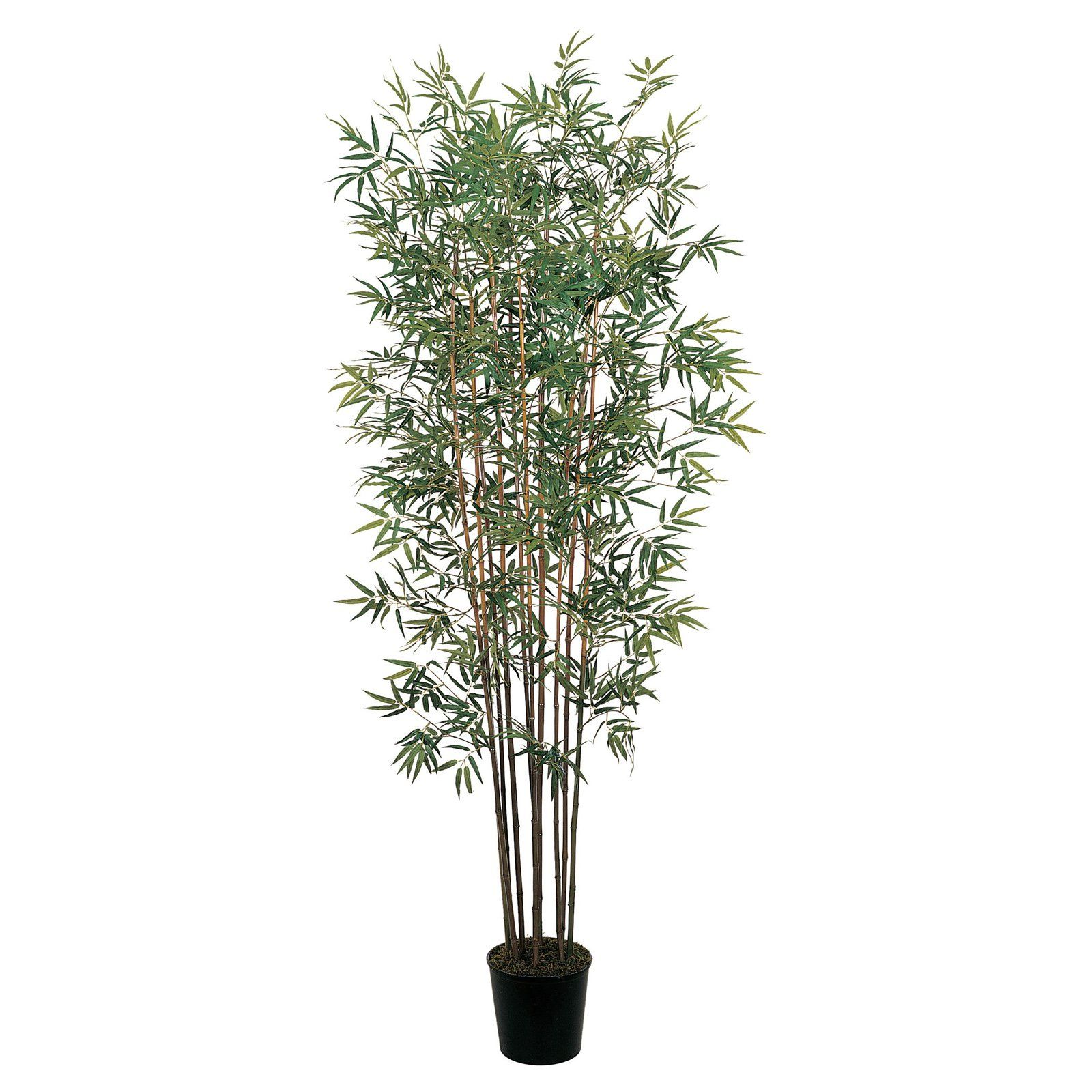 Nearly Natural 6 Ft Mini Bamboo Silk Tree In 2019 Products