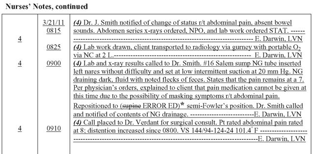 nursing notes documentation examples