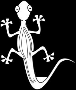 Lizard Outline Clip Art Clip Art Art Online Art