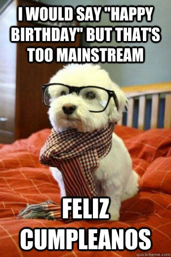 Funny Dog Meme Happy Birthday : Happy birthday funny google zoeken