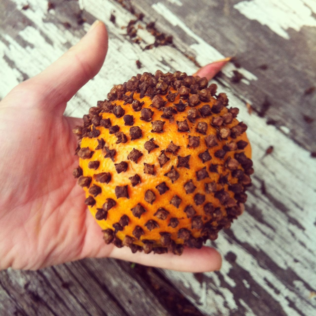 casapepe:  Make your house smell amazing for the holidays with Clove-Studded Oranges!  This project will take a little bit of hard work and patience but the aroma of orange and cloves wafting through your home this holiday season will ultimately make it well worth the effort.