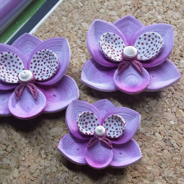 orchidee quilling