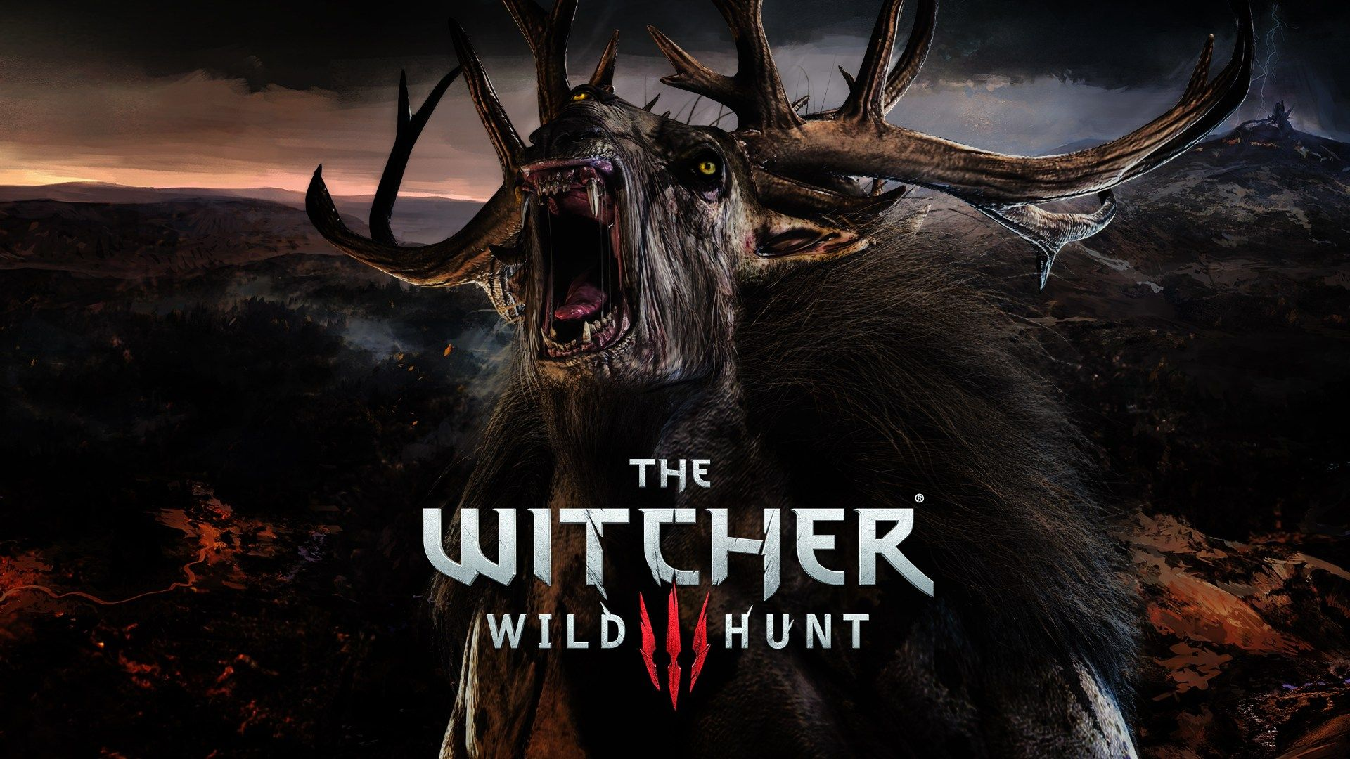 Witcher 3 Wallpaper Hd: HD The Witcher 3 Wild Hunt Wallpaper