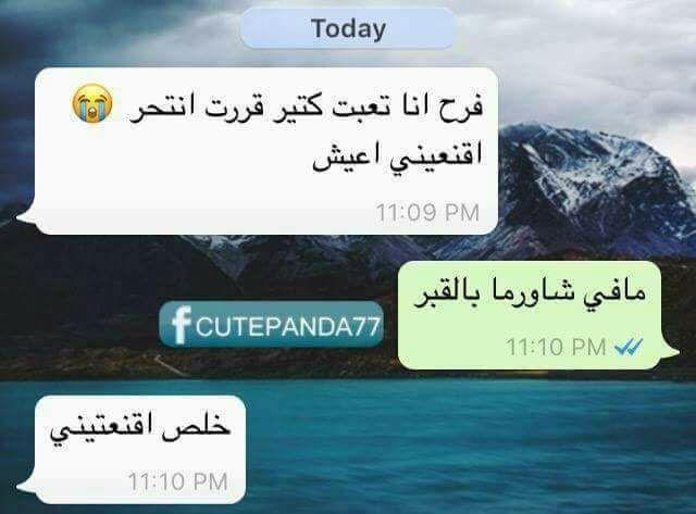 مافي شاورما بالقبر Funny Arabic Quotes Funny Text Messages Comedy Quotes