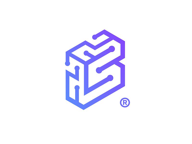 Slokoto Technology Logo Brain Logo Technology Design Graphic