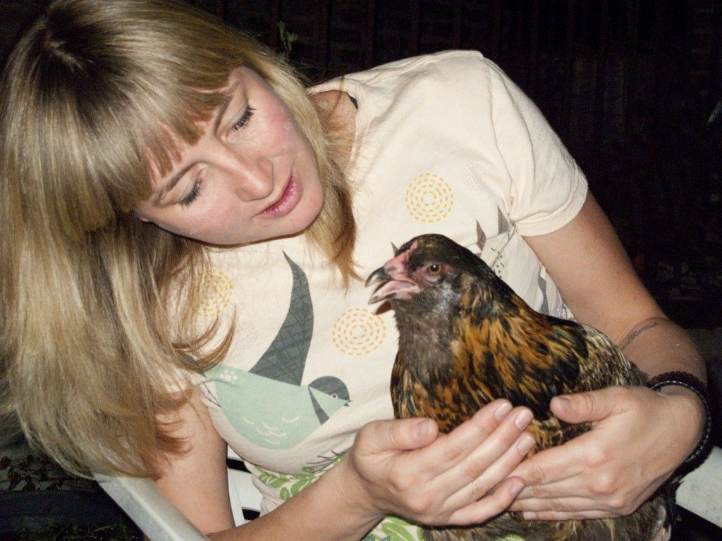 why you shouldn u0027t keep chickens great blog post grow