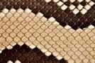 textuur slang
