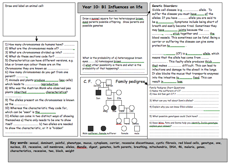 2nd Of 6 Great B1 Revision Worksheets By Ferridaym With Answers
