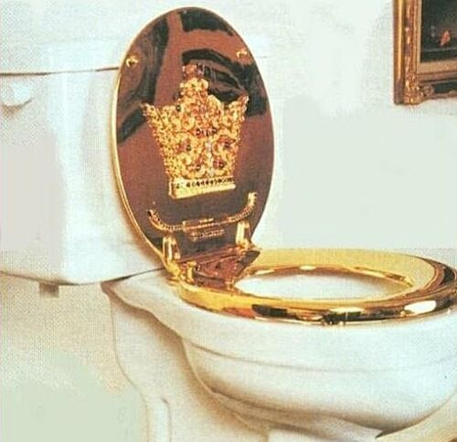 gold plated toilet seat. Well  this is a seat fit for princess or queen I d have to