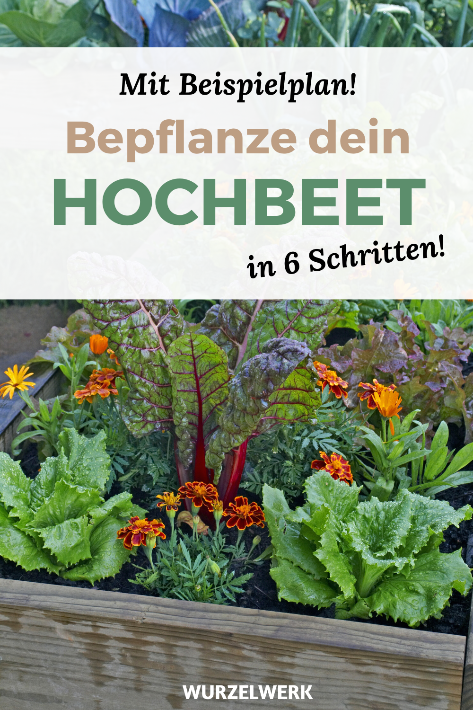 Hochbeet bepflanzen in 6 Schritten (+ Beispielplan)
