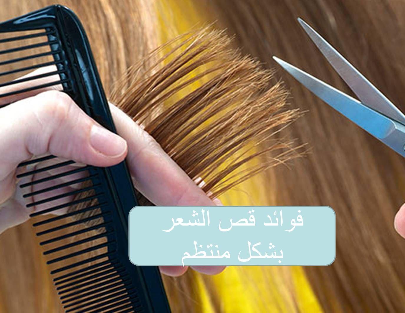 Pin On البيت العربي