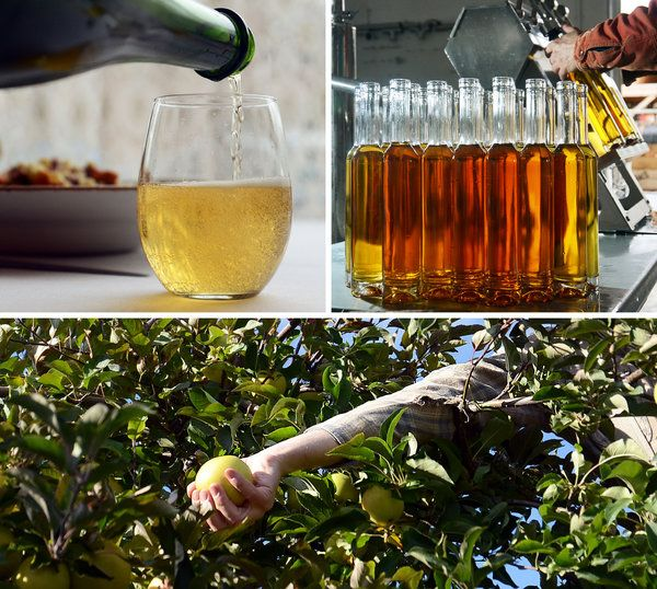 Sips From a Cider Spree in New York State