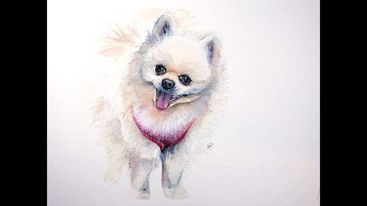Watercolor Pomeranian Dog Painting Tutorial Dog Paintings