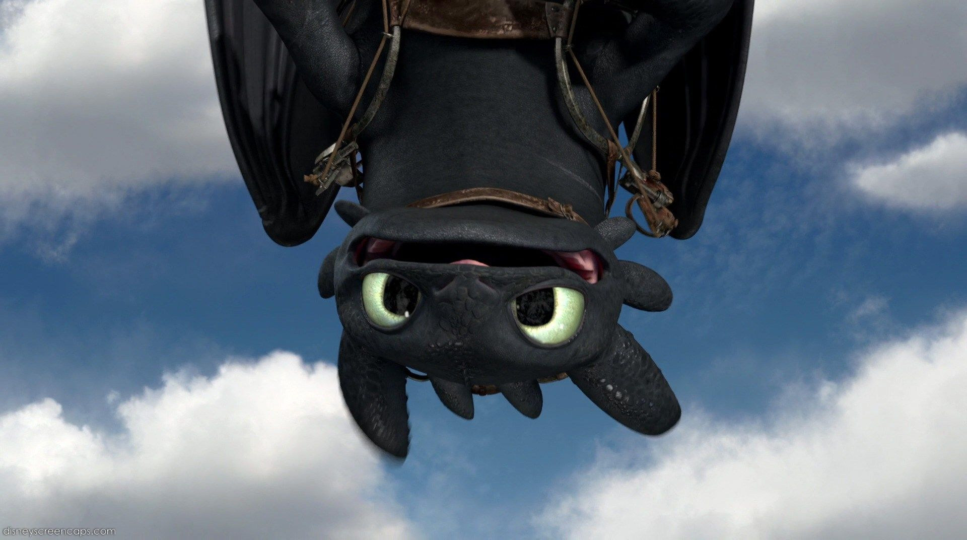 how to train your dragon nightfury toothless wallpapers