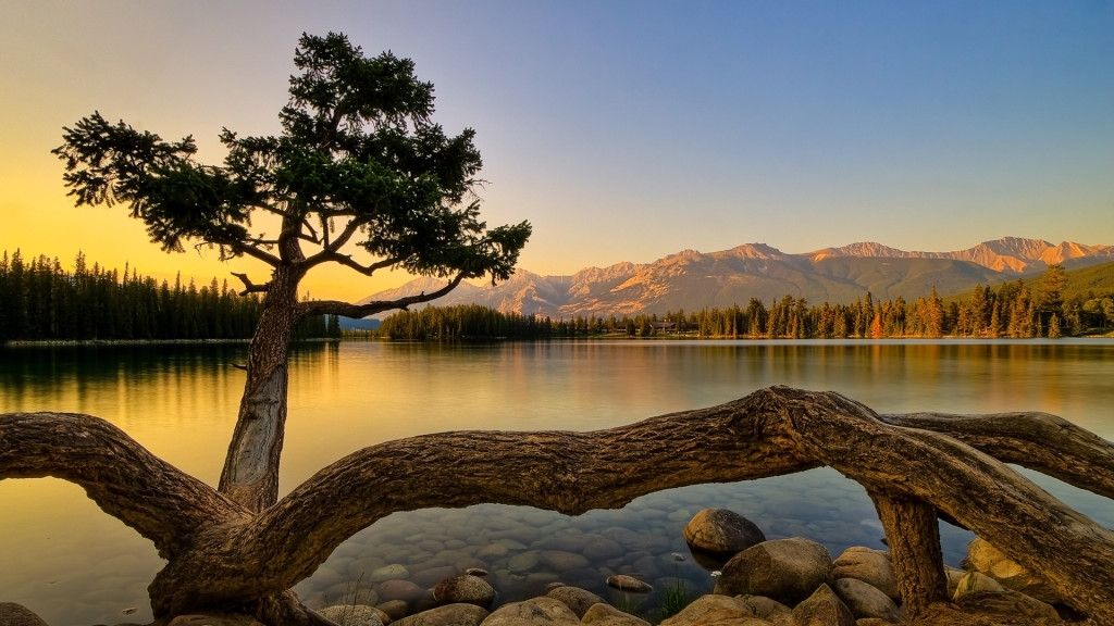 Computer Wallpaper Hd Full Size Download Beautiful Nature Hd Nature Wallpapers Scenery