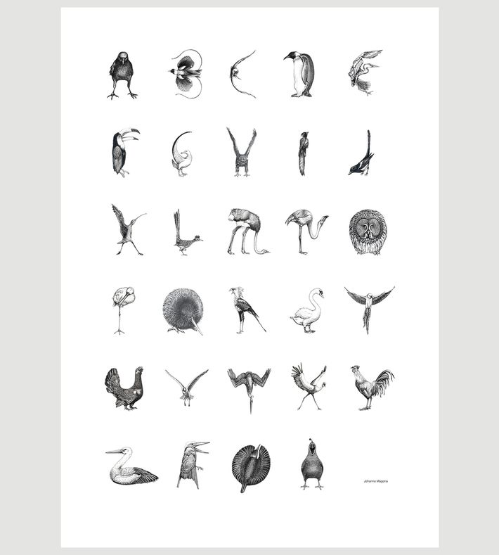 The Bird Alphabet is a graphic poster illustrated by Johanna Magoria. Each letter in the Danish alphabet is represented by the shape of a bird, methodically drawn with pencil with great attention to details.  The Bird Alphabet is offset printed on environmentally friendly, 170g matte high quality paper and is available in two different sizes; 42 x 59,4 cm and 70 x 100 cm.  Each poster has been signed by Johanna Magoria.  More info at: http://www.johannamagoria.com