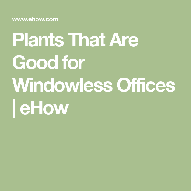 plants for windowless office. plants that are good for windowless offices office