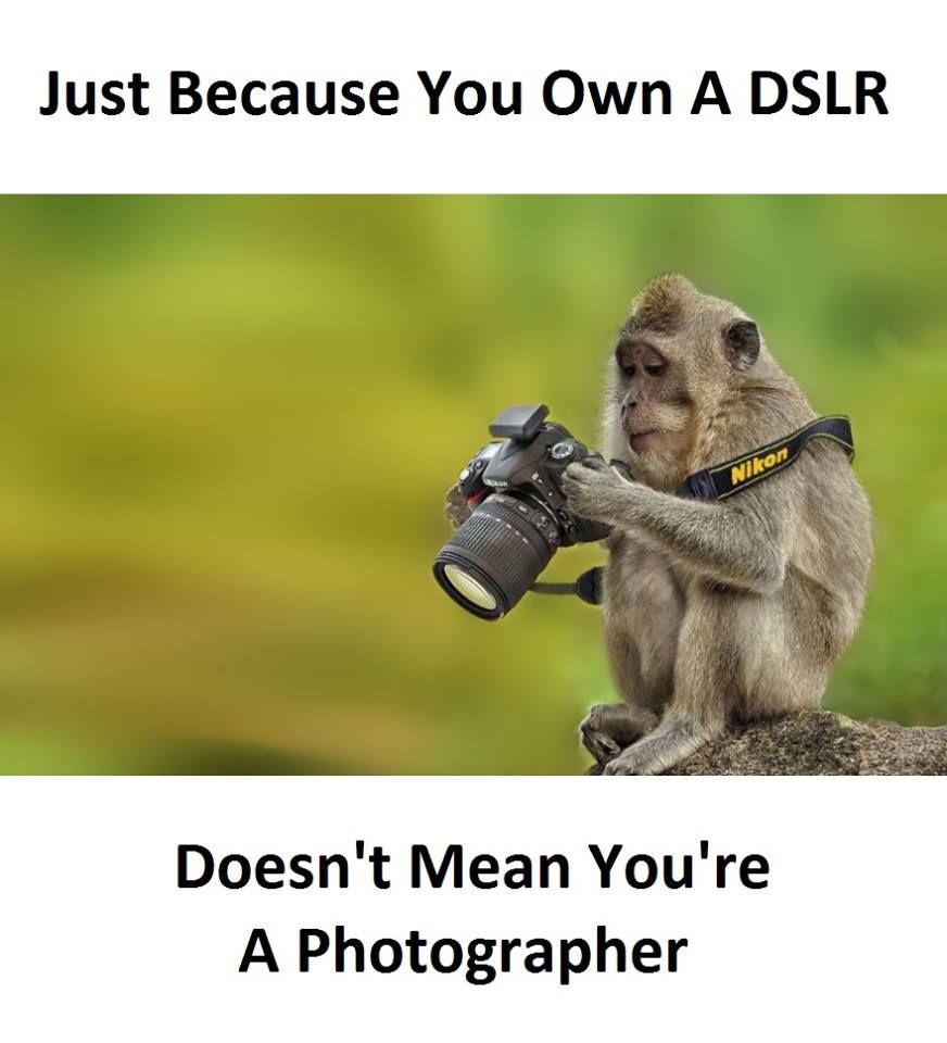 Own A DSLR