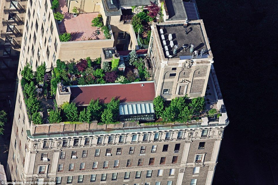 New York S Secret Skyline Amazing Aerial Shots Give Rare Glimpse Of City S Hidden Rooftop World New York Rooftop Nyc Rooftop Rooftop