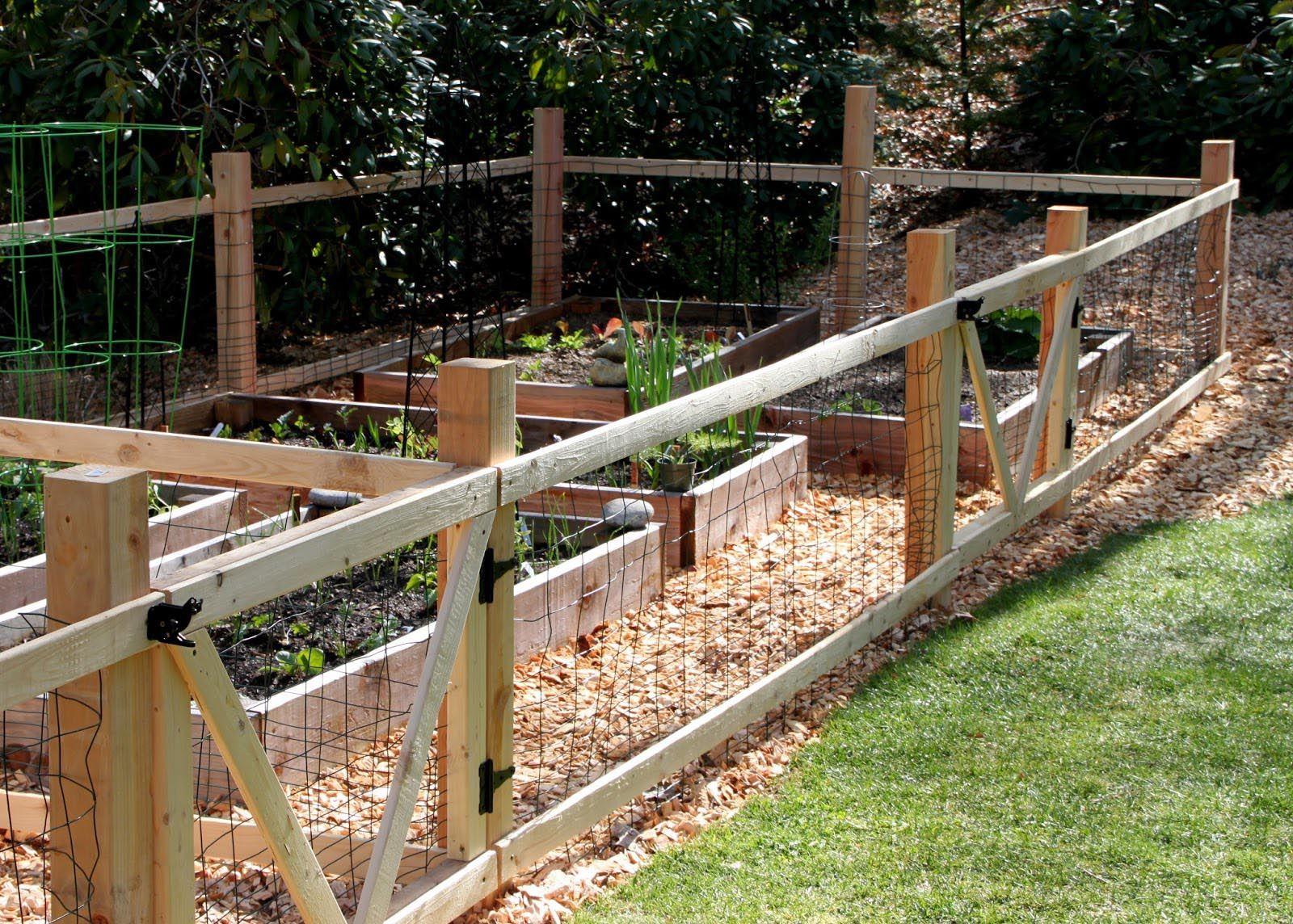 Building Fence Around Vegetable Garden Small Garden Fence Diy