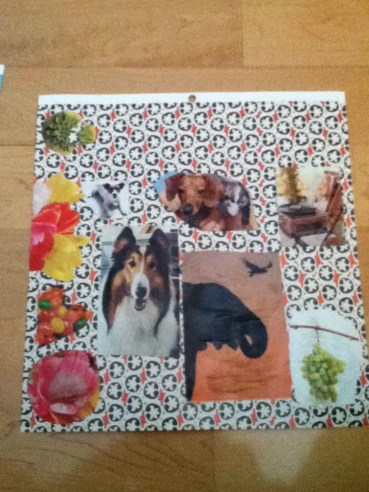 collage de sydney
