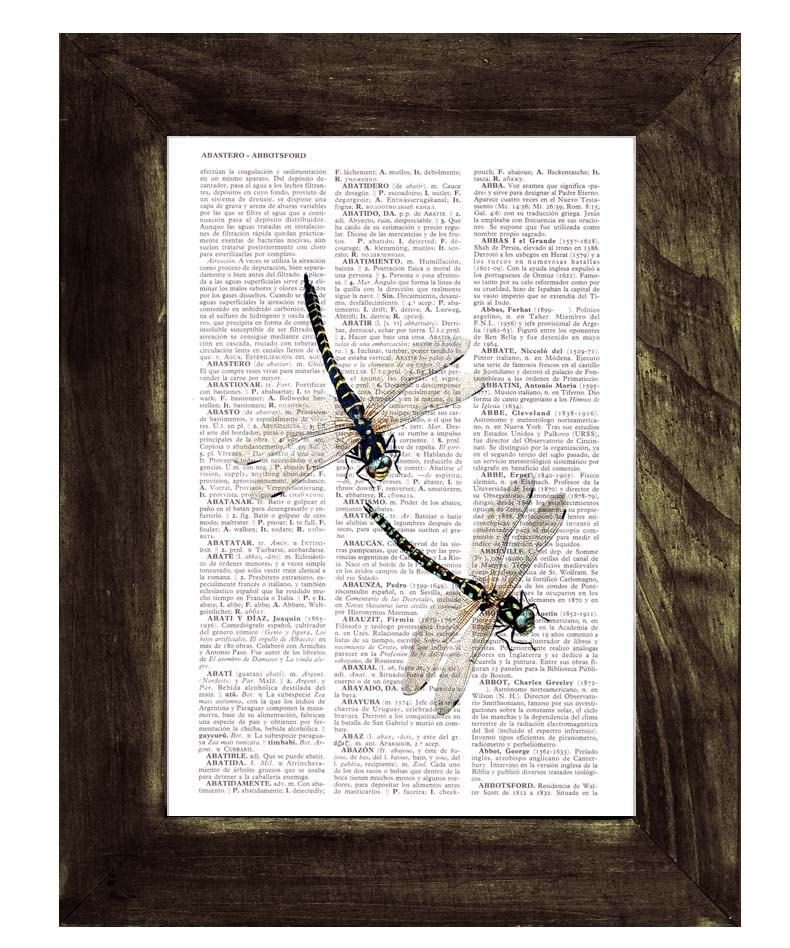 Vintage Dragonfly Insect Print Original Antique Dictionary Page Wall Art Picture