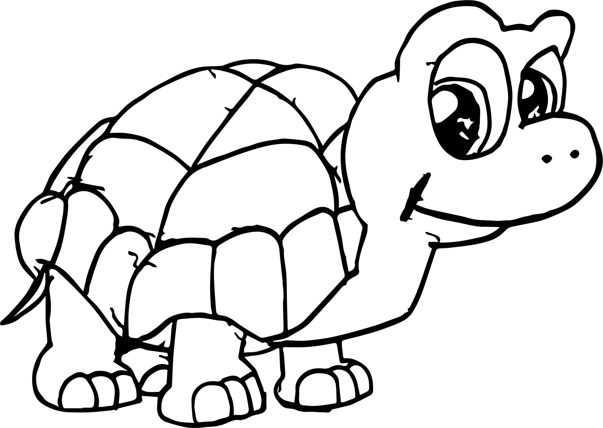 Nice Waiting Tortoise Turtle Coloring Page Turtle Coloring Pages Coloring Pages Fish Coloring Page
