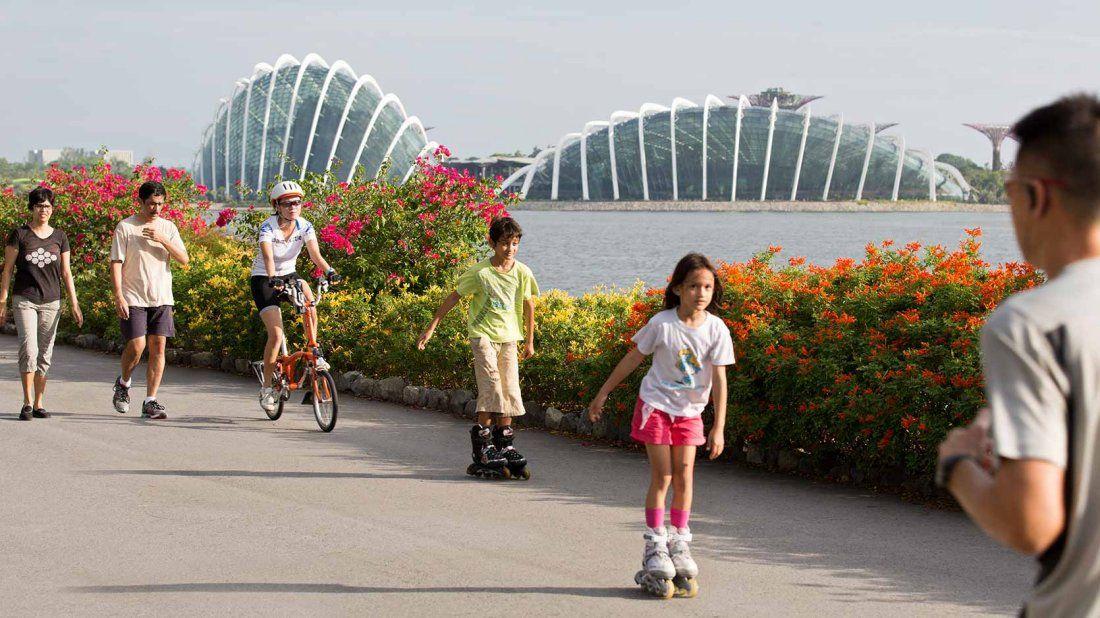 Bay East Garden Gardens By The Bay Pedestrian Bridge Marina Bay