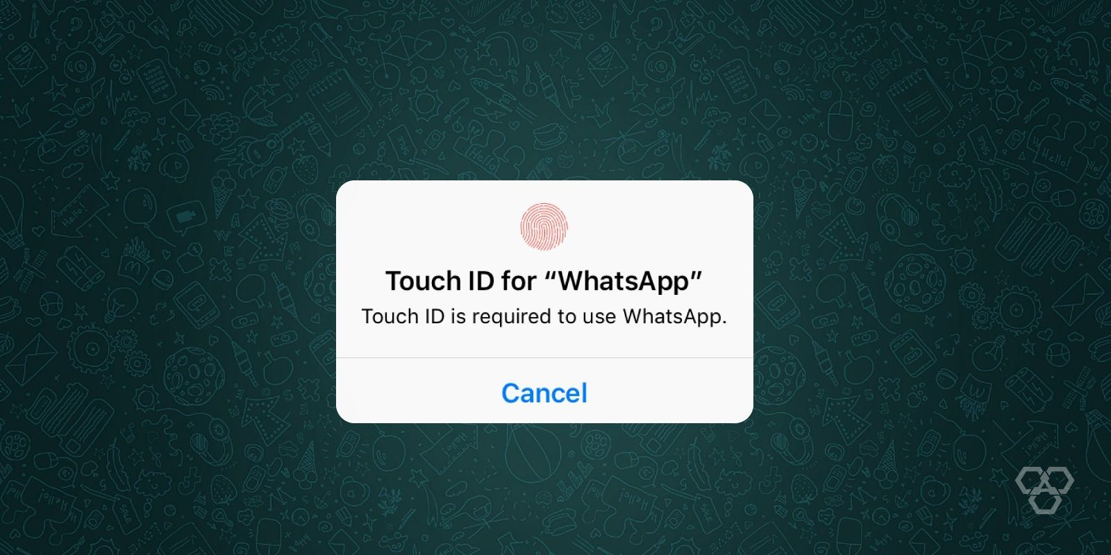 How to secure WhatsApp with fingerprint lock on Android